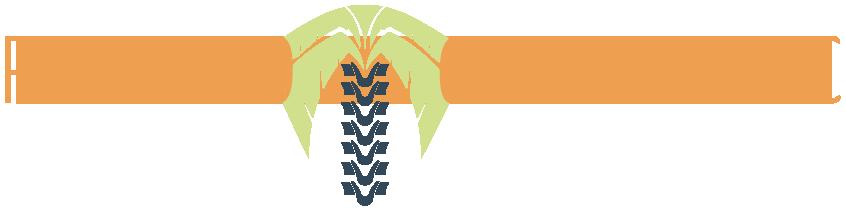 Palmetto Chiropractic Logo